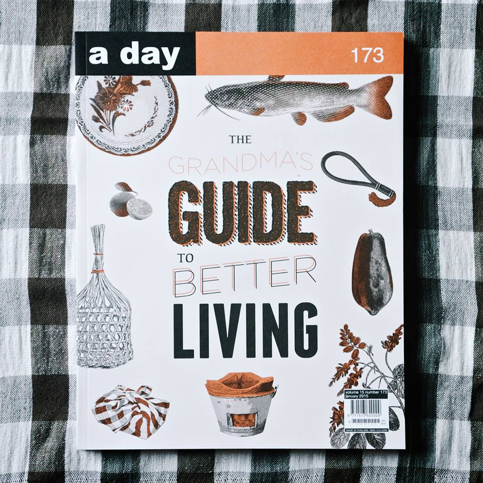 a day 173 cover